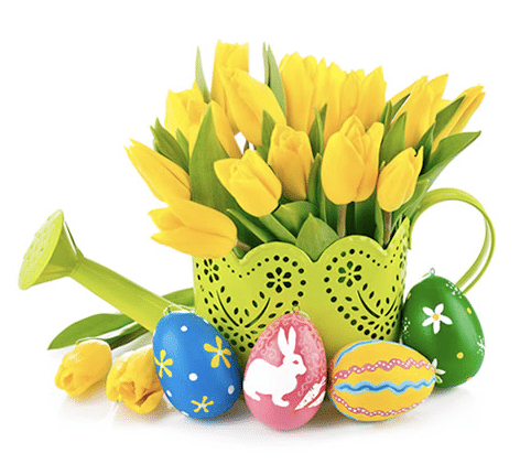 Happy Easter Epuffer Coupon – 20% Off Online Orders